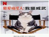 《最爱喵星人:我猫威武》全高清完整版中文字幕