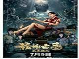龙棺古墓:西夏狼王 高清完整版