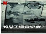《谁杀了调查记者》全高清完整版无删减免费观看中文字幕